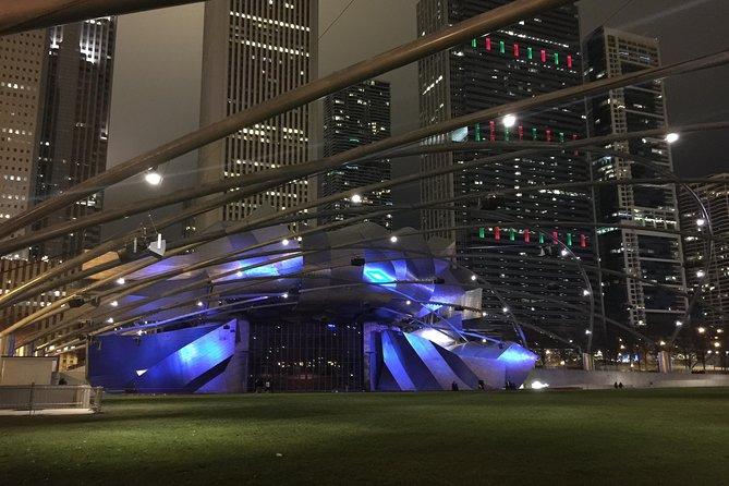 Private Chicago City Tour