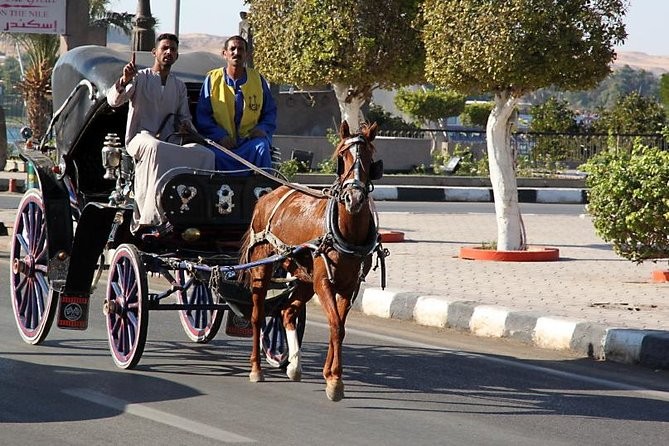 Tour by Horse Carriage around Luxor