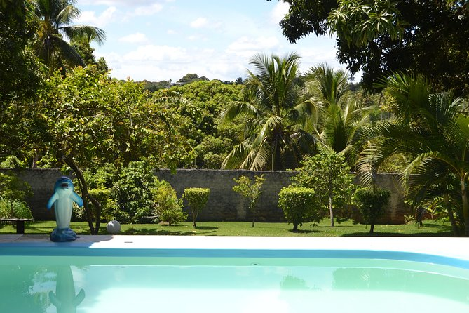 One day in paradies, relax and swim in our troical garden (lunch included) photo 1