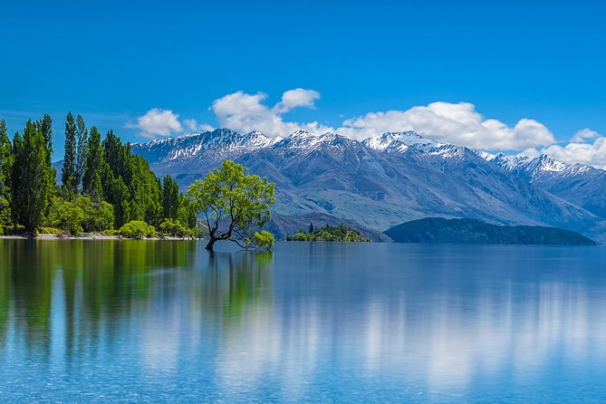 Full Day Cromwell, Wanaka and Arrowtown tour from Queenstown