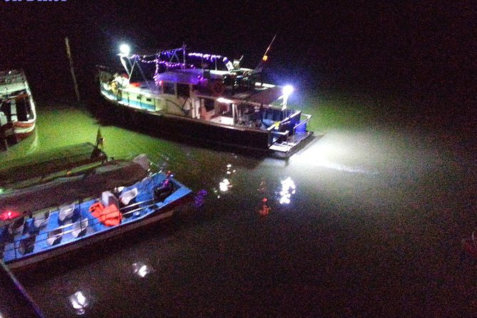 Lucky Dolphin sightings & Firefly Tour at Kuala Sepetang from Kuala Lumpur photo 3