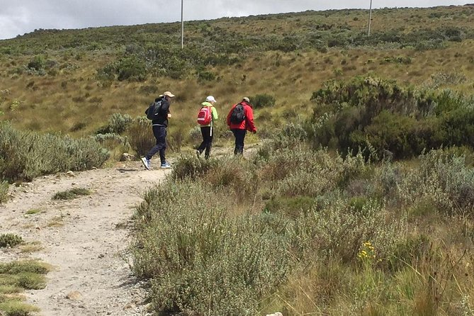 Mt Kenya Day hike photo 1