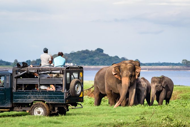 Nature and Wildlife Experience Tour in Sri Lanka with Universal Lotus Tours