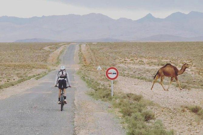 Southern Morocco 5 Day Southern Morocco Tour