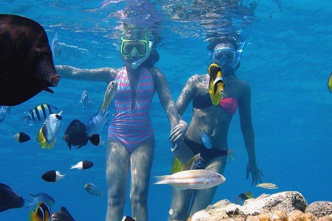 Tiran Island Boat Trip Snorkeling and Diving