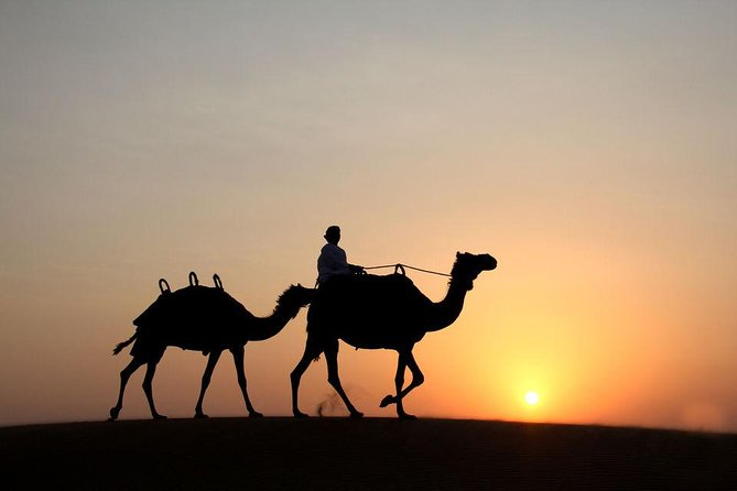 Dubai: Desert Safari with Camel Ride photo 3
