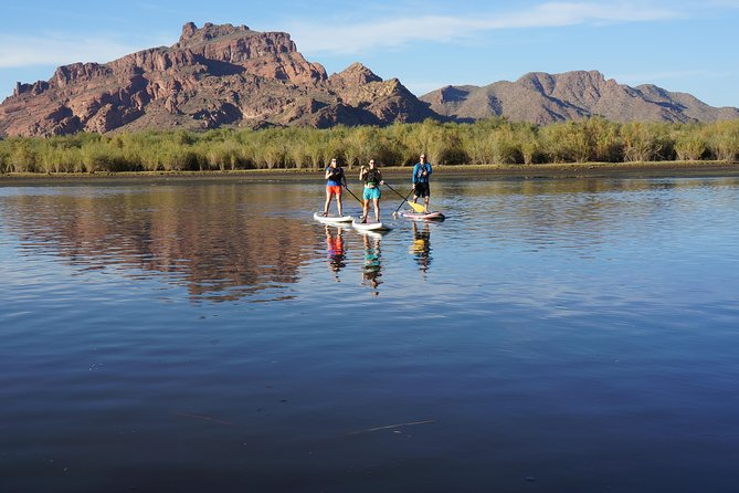 Go on a guided SUP tour in AZ!