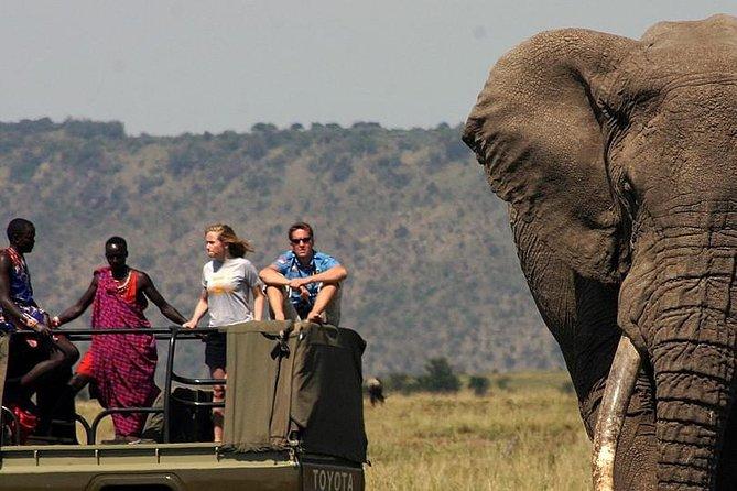 6 Days Tanzania Wildlife Camping Safari