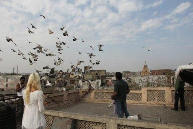 Kite Flying And Culture Walk In Old Delhi With Lunch Or Dinner