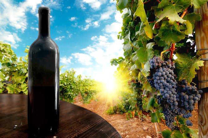 Wine Tour from Kutaisi