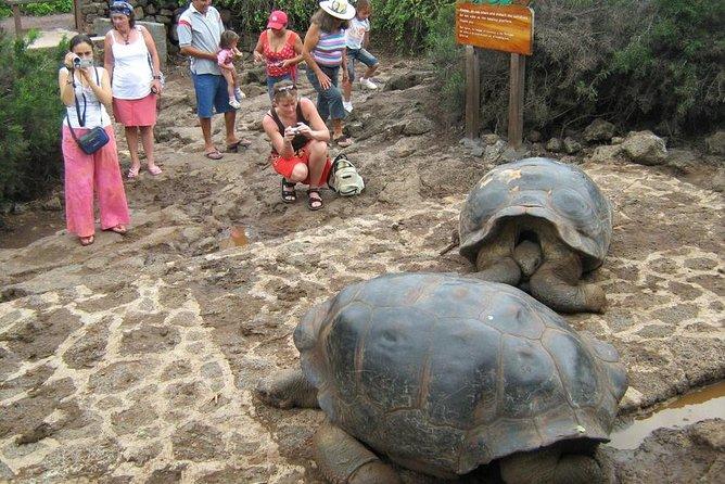 Ecuadorian Experience Guayaquil-Galápagos 8 Days 7 Nights