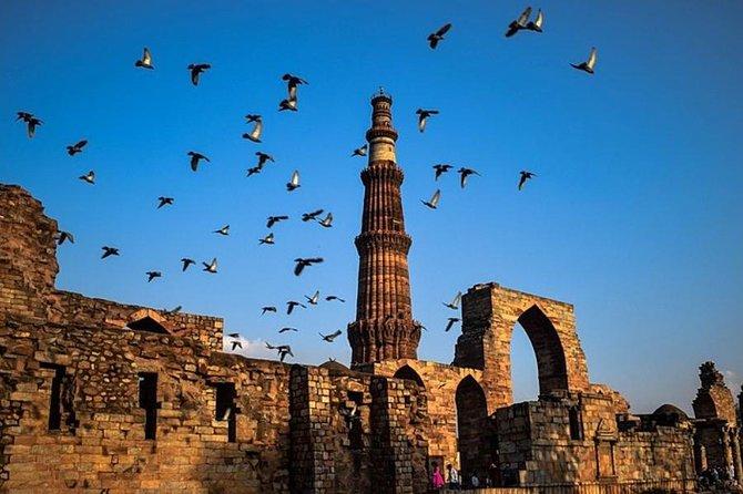 Heritage Tour of Delhi including Qutub Minar and Mehrauli Archaeological Park