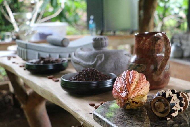 Eden Chocolate Tour - The best chocolate tour in La Fortuna