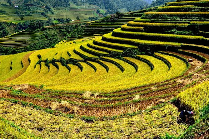 Sapa By Bus 2 Days 1 Night Overnight In Homestay Tour From Hanoi