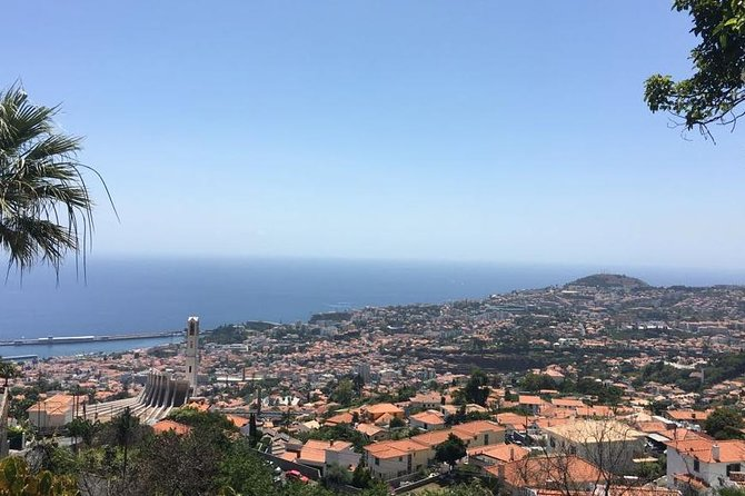 Funchal Private Transfers Service to Madeira Airport