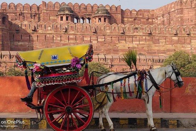 Delhi Agra Same Day Tour with Private Guide