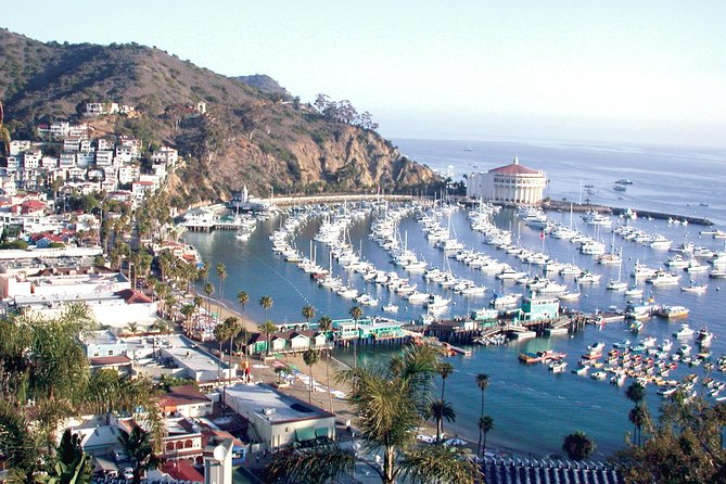 3-Day Private Yacht Charter to Catalina Island from San Diego