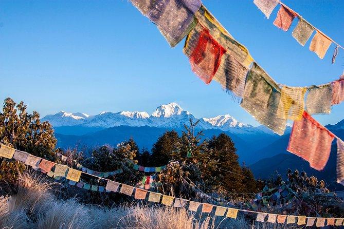 Ghorepani Poon Hill Trek: a classic trek in Nepal