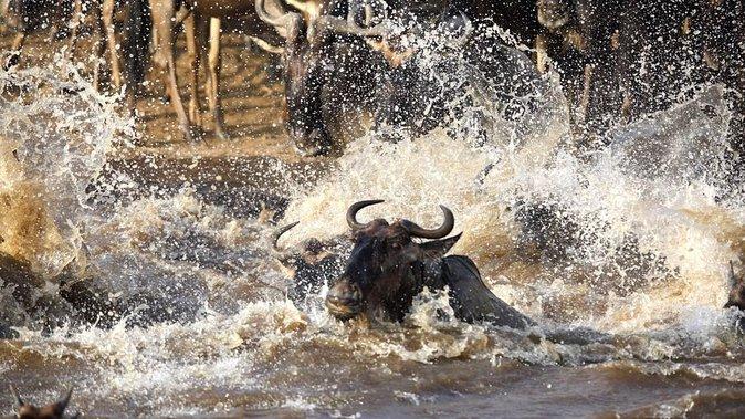 A Kenya Safari And Beach Holiday 10 days (Kenya's best hotels)