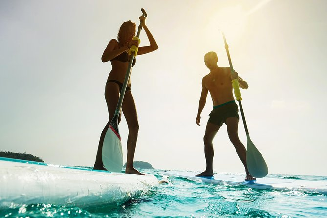 Stand up Paddle on the beautiful Noosa River with Hourly Board Hire