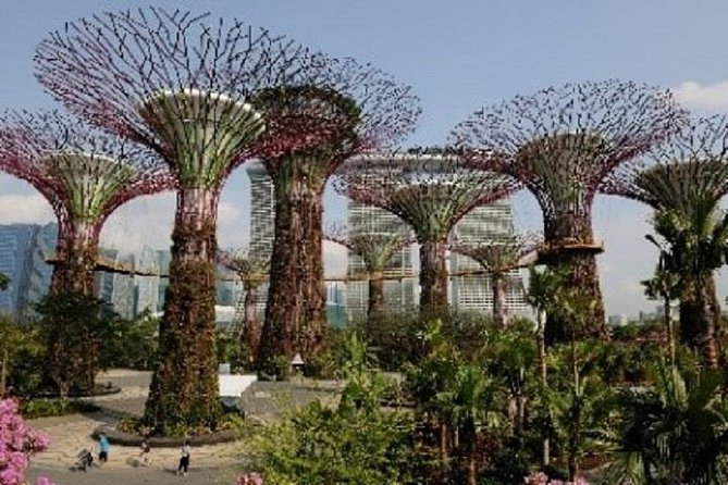 Gardens by the Bay & Satay