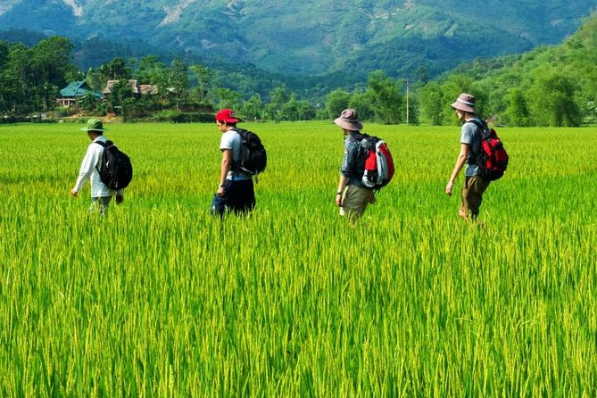 Mai Chau - Pu Luong - Ninh Binh 4 days tour: Enjoy rural life & Eco tourism