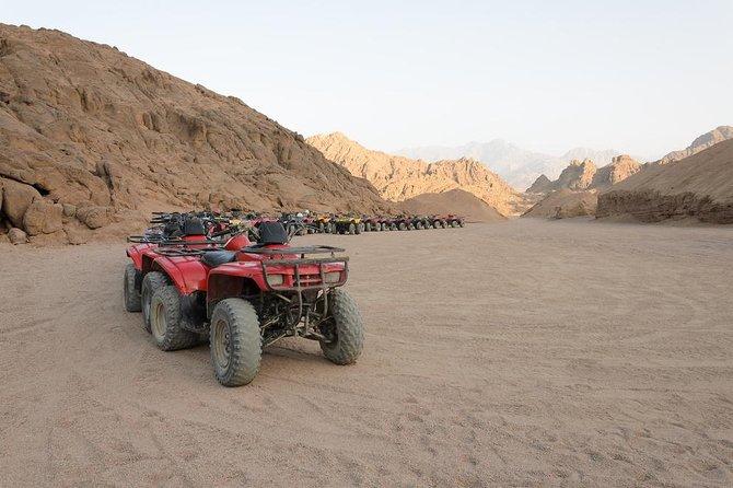 Safari in Sharm with Quad ATVs