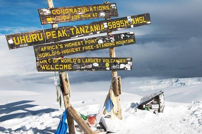 5-Day Kilimanjaro Climb Marangu Route - Coca Cola Route