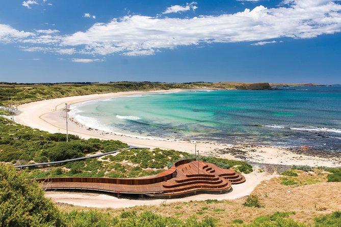 12 Apostles & Phillip Island Private Tours - Combo Special