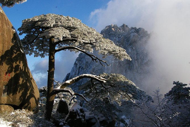 1 Day Mt Huangshan(Yellow Mountain) Group Tour-No Shopping