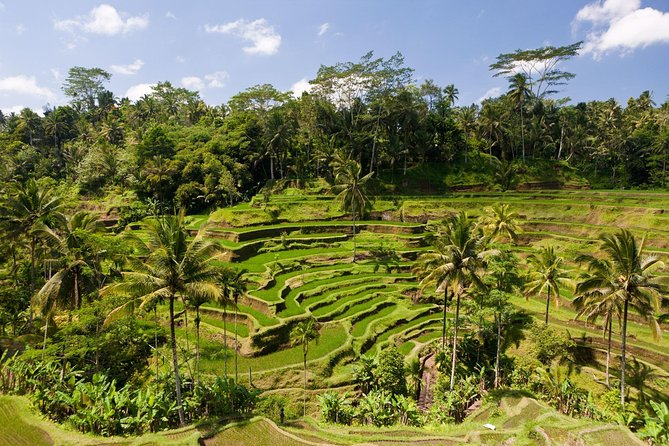 ubud amazing tour