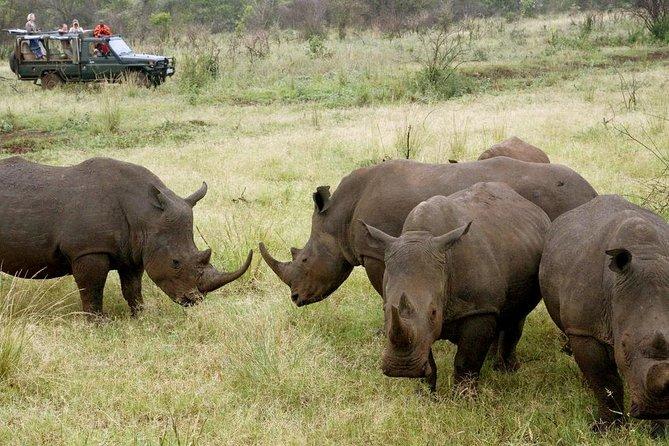 8 Days Southern Tanzania Budget Road Safari