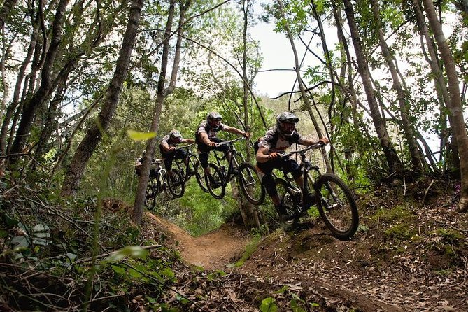 Enduro Bike Tour Vilnius photo 2