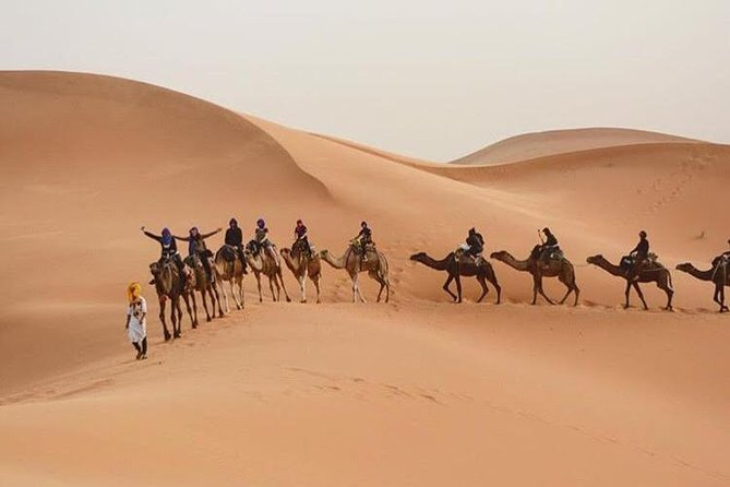 Camel Ride with 1 night in Luxury Desert Camp