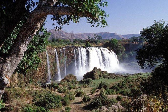 8 Days - 7 Nights Classic Ethiopia Tour