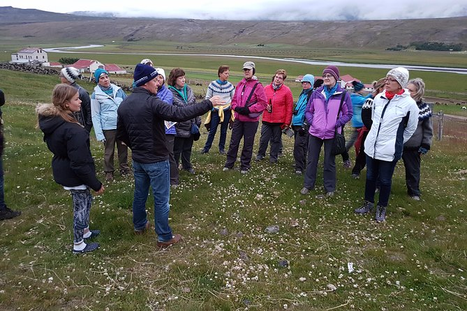 Educational tour around Iceland, learn about nature and culture with local guide