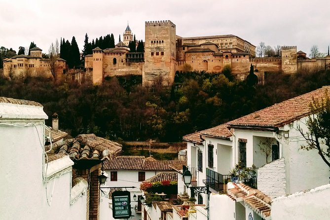 Alhambra and Granada City Center sightseeing tour!