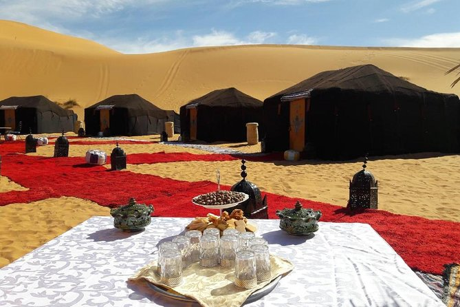 Desert tour from marrakech to draa valley 2 days including camel ride