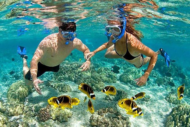 Full Day in Playa Blanca - Barú with Snorkel