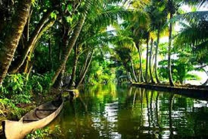 Kerala Tour- package, Backwaters & Wild life
