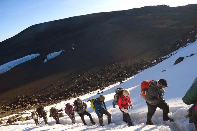 8 Day Mt Kilimanjaro Lemosho Route Climbing - Group Joining Tour