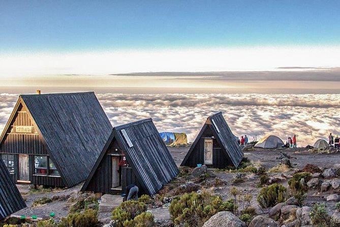 6 Days Kilimanjaro Climb Marangu Route (Cocacola Route) - Group Joining Tour