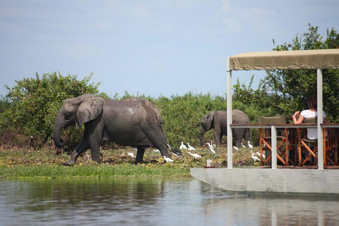4-Day Selous Private Safari photo 1