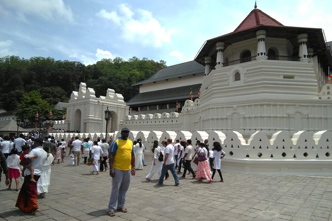 Private 7-Day Budget Tour of Sri Lanka's UNESCO Sites