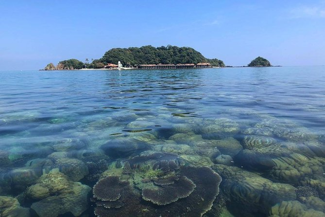 Snorkeling & Diving in South China Sea (Malaysia)