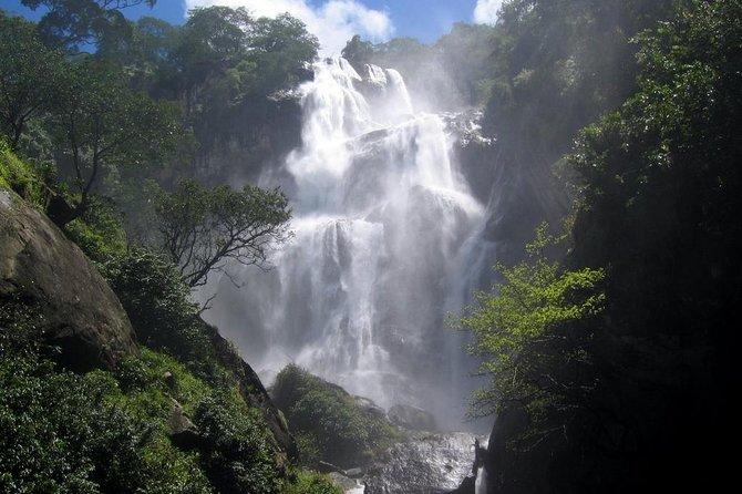 4 Days Safari to Mikumi NP and Udzungwa Mountain NP Mid - Range Accommodation