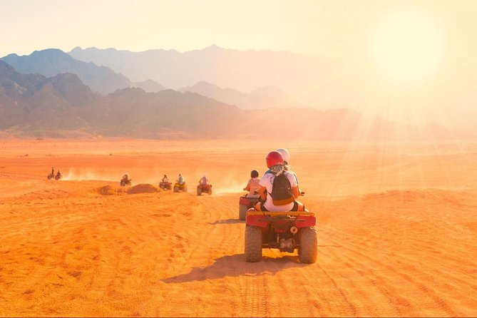 safari trips