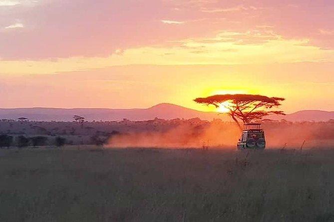 5 Days Tanzania Lodge Adventure