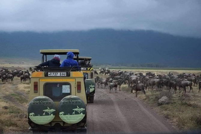 Tanzania 5days Bushmen Tribes Special Basic Camping