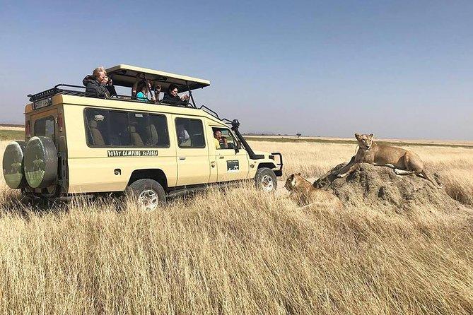 3-Day Tanzania Basic Camping Adventure